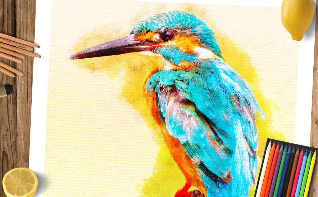 avian-beak-doodle-by-numbers-preview-image-001